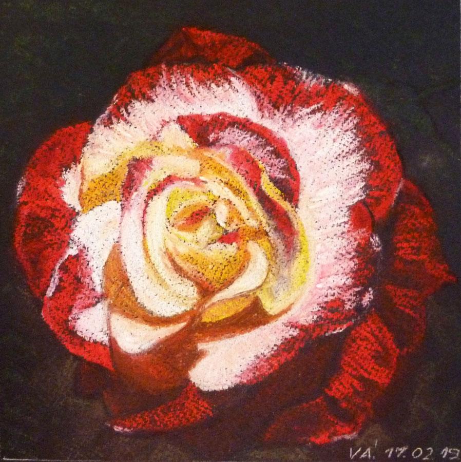 Jobb agyféltekés pasztell tanfolyam 1.szint virágcsendélet festés porpasztell