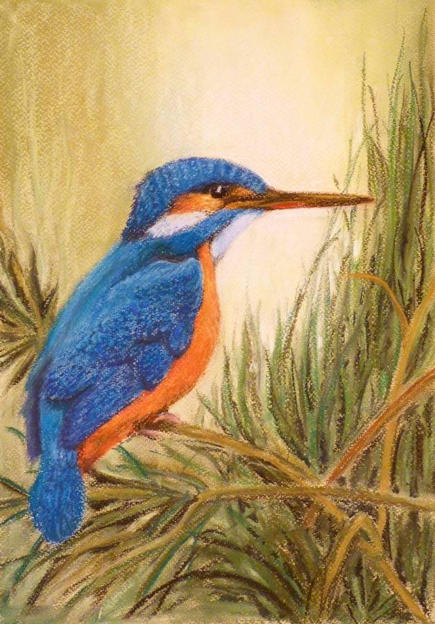 Jobb agyféltekés pasztell tanfolyam 2.szint állat madár festés porpasztell